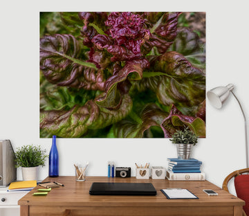 3D Purple Plant 112 Jerry LoFaro Wall Sticker