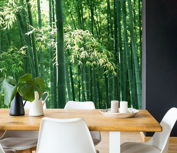3D Bamboo Forest 030 Wall Murals Wallpaper AJ Wallpaper 2