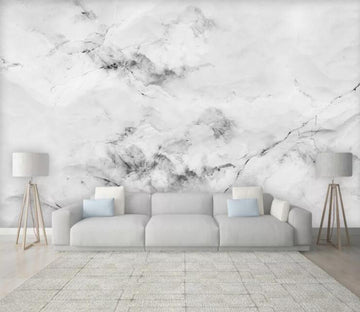 3D Black Ink Painting WC1820 Wall Murals