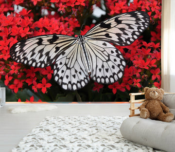 3D Black Butterfly 145 Wall Murals