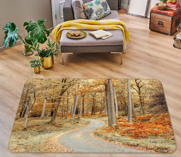 3D Maple Road 155 Assaf Frank Rug Non Slip Rug Mat