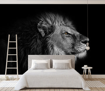 3D Black Lion 273 Wall Murals