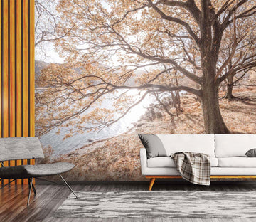 3D Maple Forest Lake 057 Assaf Frank Wall Mural Wall Murals
