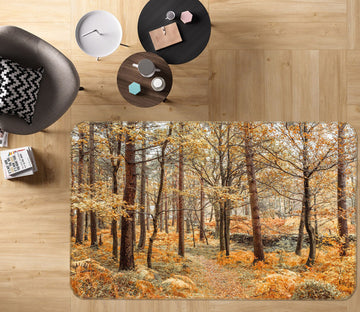 3D Autumn Maple 154 Assaf Frank Rug Non Slip Rug Mat