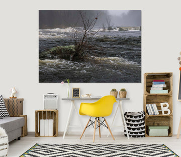 3D Misty River 113 Jerry LoFaro Wall Sticker