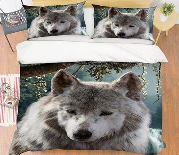 3D Wolf 21062 Bed Pillowcases Quilt