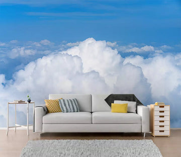 3D White Clouds 1163 Wall Murals