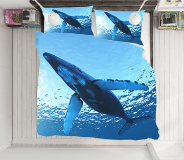 3D Whale 21018 Bed Pillowcases Quilt