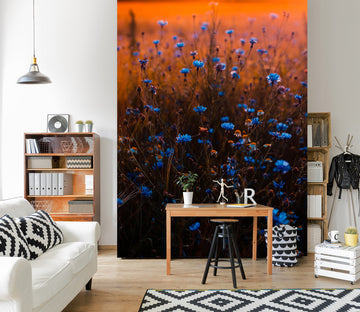 3D Sunset Flowers 2092 Wall Murals