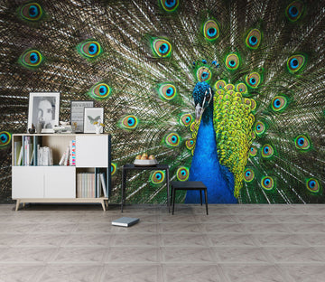 3D Beautiful Peacock 211 Wall Murals