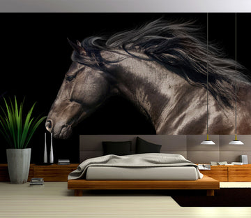 3D Brown Horse 300 Wall Murals