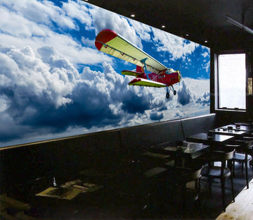 3D Plane Sky 896 Vehicle Wall Murals
