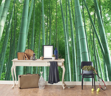 3D Bamboo Forest 069 Wall Murals Wallpaper AJ Wallpaper 2