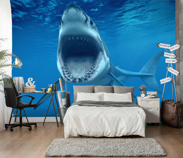 3D Big Mouth Shark 384 Wall Murals