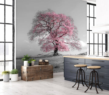 3D Cherry Tree 059 Assaf Frank Wall Mural Wall Murals