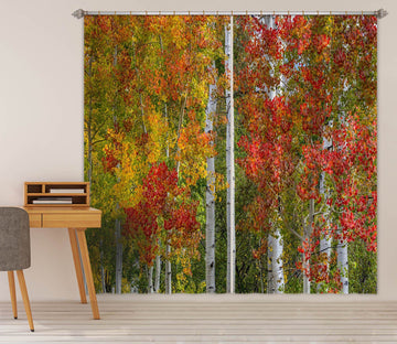 3D Autumn Leaves 062 Marco Carmassi Curtain Curtains Drapes Curtains AJ Creativity Home