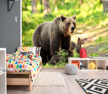 3D Black Bear 331 Wall Murals