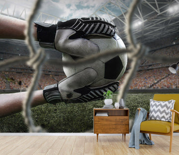 3D Football Goalkeeper 1654 Wallpaper AJ Wallpaper 2