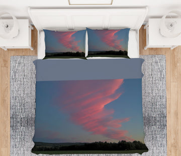 3D Pink Cloud 1031 Jerry LoFaro bedding Bed Pillowcases Quilt