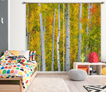 3D Autumn Forest 169 Marco Carmassi Curtain Curtains Drapes