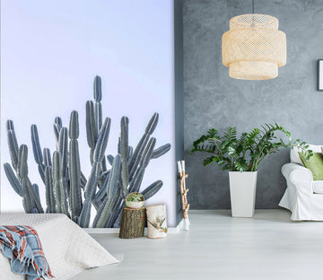 3D Cactus Cultivation 111 Assaf Frank Wall Mural Wall Murals