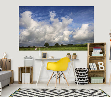 3D Grassland Sky 107 Jerry LoFaro Wall Sticker