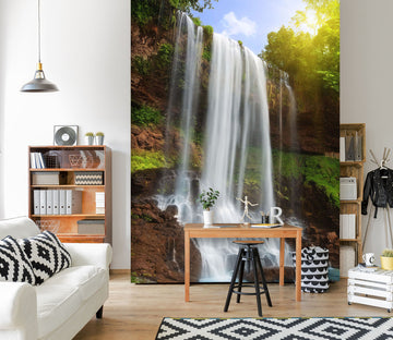 3D Long Waterfall 860 Wall Murals