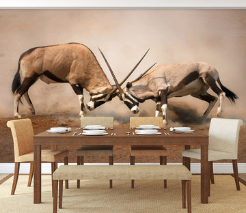 3D Antelope Battle 205 Wall Murals