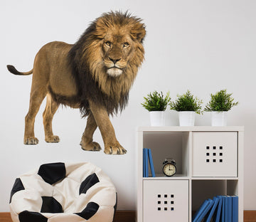 3D Lion's Eye 137 Animals Wall Stickers