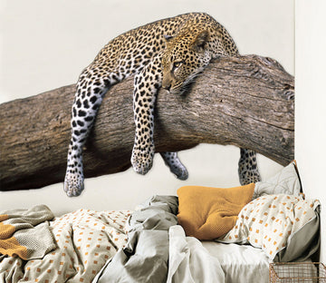 3D Leopard Lying On The Tree 011 Animals Wall Stickers