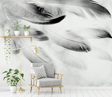 3D Black Feather WG295 Wall Murals