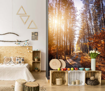 3D Forest Sunlight 2094 Wall Murals