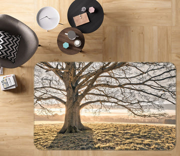 3D Tree Shadow 170 Assaf Frank Rug Non Slip Rug Mat