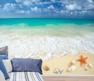 3D Beach Shells 1447 Wall Murals