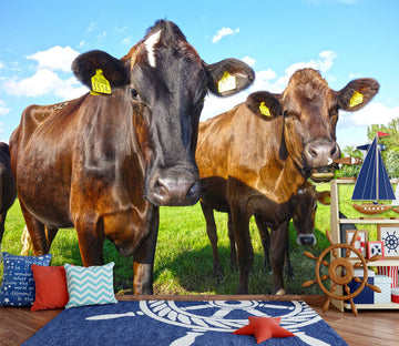 3D Brown Cow 293 Wall Murals