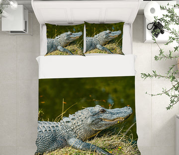 3D Crocodile 21041 Bed Pillowcases Quilt