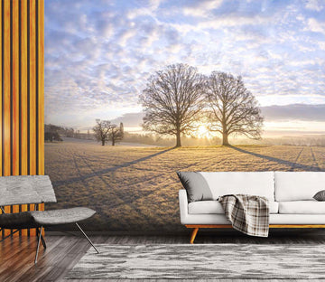 3D Sunset Tree 066 Assaf Frank Wall Mural Wall Murals