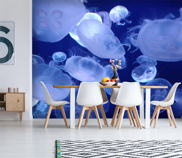 3D Blue Jellyfish 429 Wall Murals