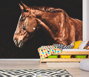 3D Brown Horse 157 Wall Murals