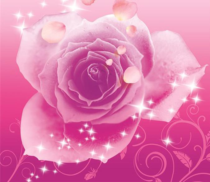 Flying Pink Petals Wallpaper AJ Wallpaper