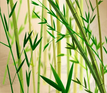 Green Bamboos Wallpaper AJ Wallpaper