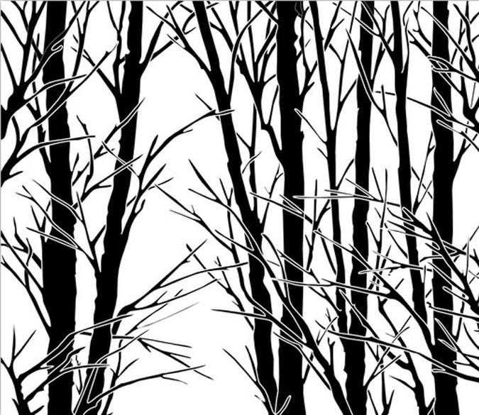 Bare Trees 2 Wallpaper AJ Wallpaper