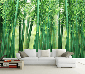 Green Bamboo Forest Wallpaper AJ Wallpaper