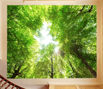 3D Forest Roof Sky Wallpaper AJ Wallpapers