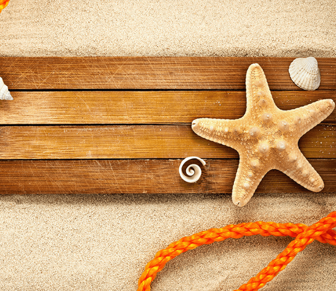 3D Beautiful Starfish Floor Mural Wallpaper AJ Wallpaper 2