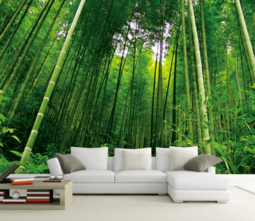 Dense Bamboo Forest Wallpaper AJ Wallpaper