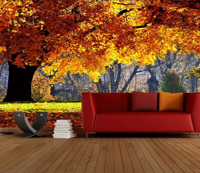 Beautiful Maple Trees 3 Wallpaper AJ Wallpaper