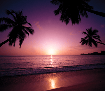 Beach Sunset 5 Wallpaper AJ Wallpaper