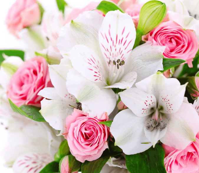Beautiful Bouquet Wallpaper AJ Wallpaper