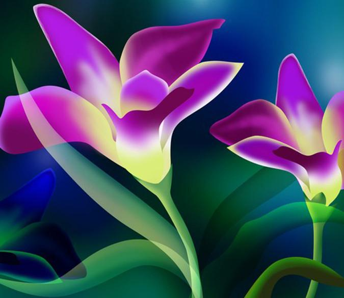 Beautiful Purple Flowers Wallpaper AJ Wallpaper